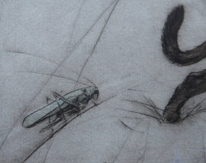 LISTED ARTIST. Vernon Stokes (1873 - 1954). Etchng of Two Siamese Cats Watching a Cricket. Pencil Signed