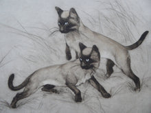 Load image into Gallery viewer, LISTED ARTIST. Vernon Stokes (1873 - 1954). Etchng of Two Siamese Cats Watching a Cricket. Pencil Signed