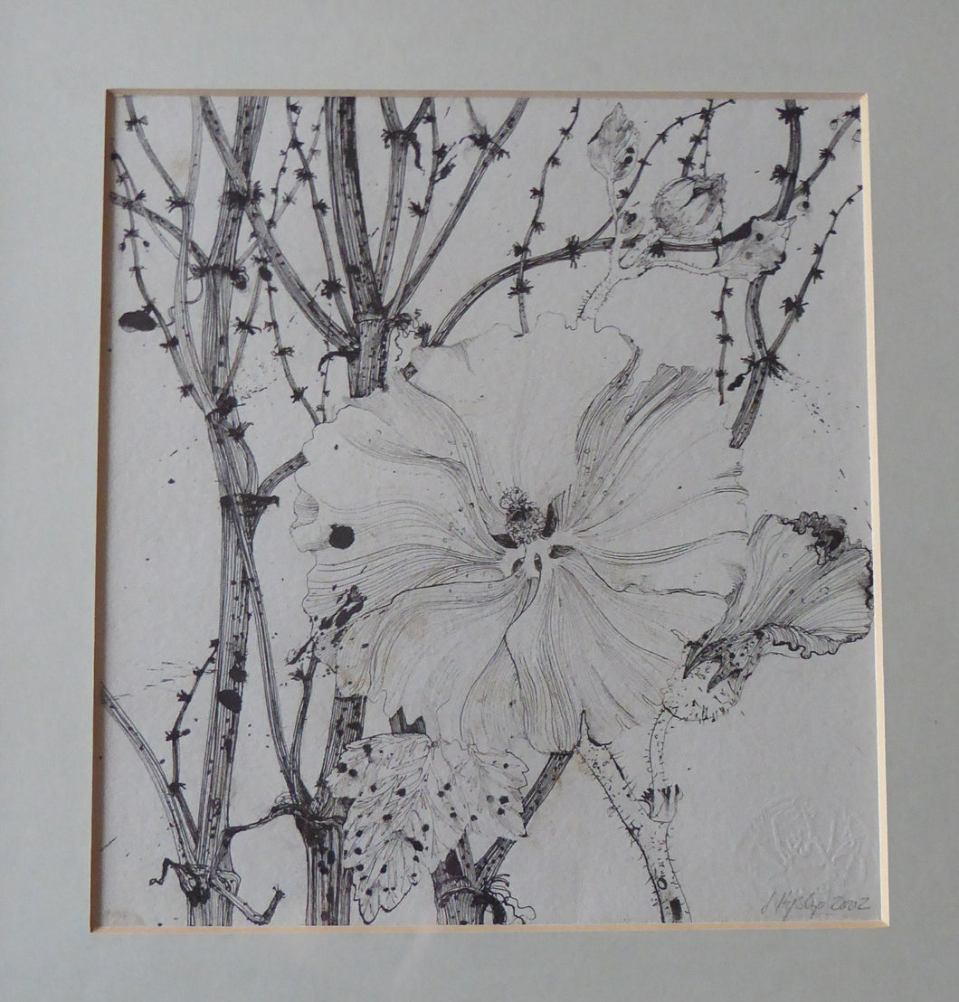 SCOTTISH ART. Jane Hyslop: Original Pen and Ink Drawing of Wildflowers and Plants. Signed and dated in pencil. FRAMED