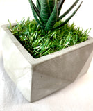 Square Algarve Planter