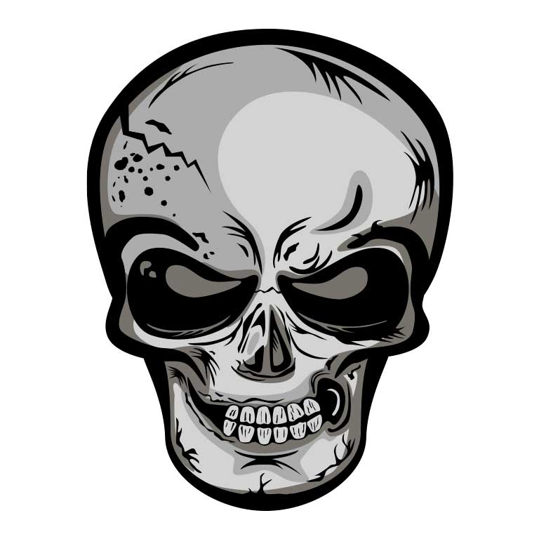 Black & Grey Skull Graphic Decal - Ragged Apparel Screen Printing and Signs - www.nmshirts.com
