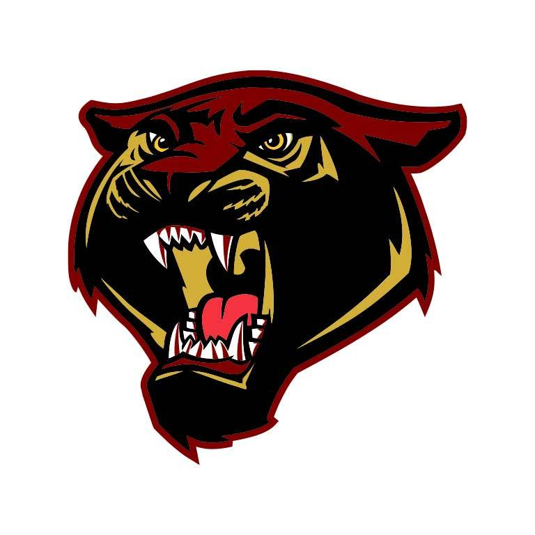 Gadsden High School Panthers Graphic Decal - Ragged Apparel Screen Printing and Signs - www.nmshirts.com