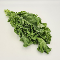 Curly Kale (200g±/pkt)