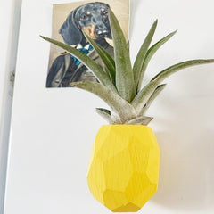 Pineapple Indoor Wall Hanger Planter - Indoor Therapy