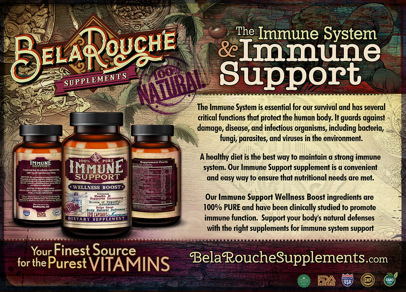The Immune System and Immune Support