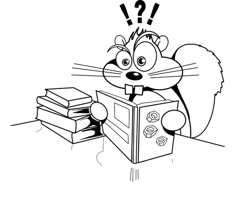 Squirrel Reading Books