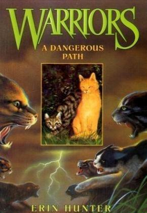A Dangerous Path (Warriors #5): Erin Hunter, Dave Stevenson: 0351987654794: Books