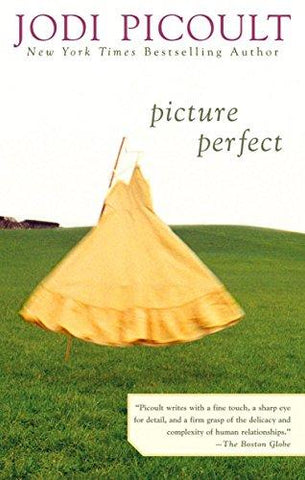 Picture Perfect: Jodi Picoult: 9780425185506: Books