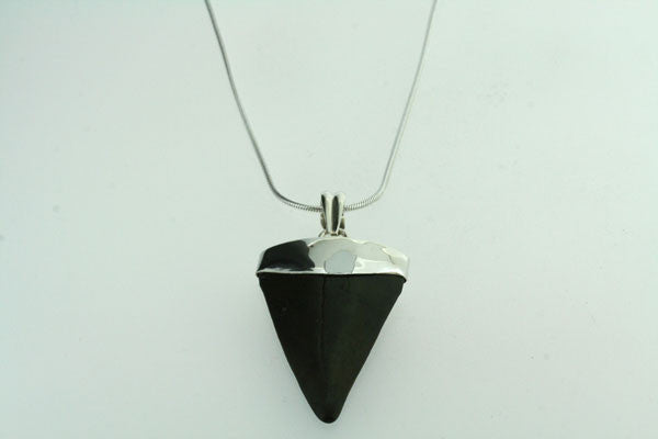 fossilised shark tooth pendant - large on 60cm link chain