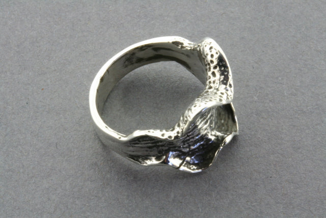 small ox clam ring