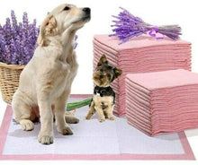 Load image into Gallery viewer, Medium Puppy Training Pads / 60 x 45cms 50 Pack