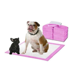 Pet Puppy Large Training Wee Pads/Mats Ultra Absorbent Anti Slip 60 x 45cms 50 Pack Puppy Pads