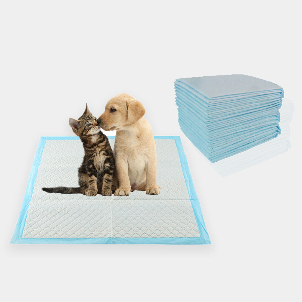 Large Puppy Pads 56 x 56 cms 50 Pack