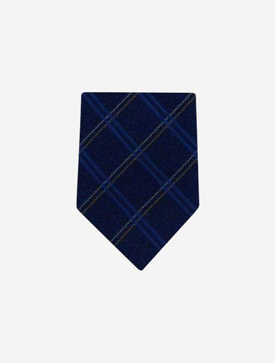 Men's Navy with Multicolored Stripes 100% Silk Tie