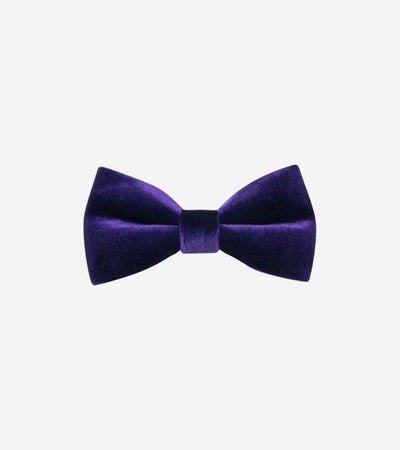 Men's Purple Velvet Bowtie
