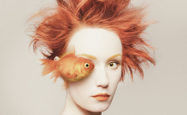 Artist Spotlight: Flora Borsi, The Artist and The Animal