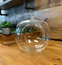 "Load image into Gallery viewer, Terrarium 8.5"" Hanging Sphere (rope included)"