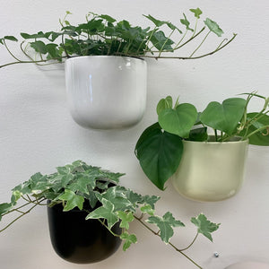 "Ceramic Wall planters— 5""x 4.75  (available In three colours )"