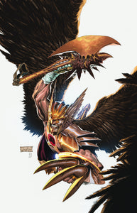SAVAGE HAWKMAN TP VOL 01 DARKNESS RISING (N52)