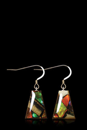 Ammolite & Mammoth Ivory Earrings (Dima) Flare
