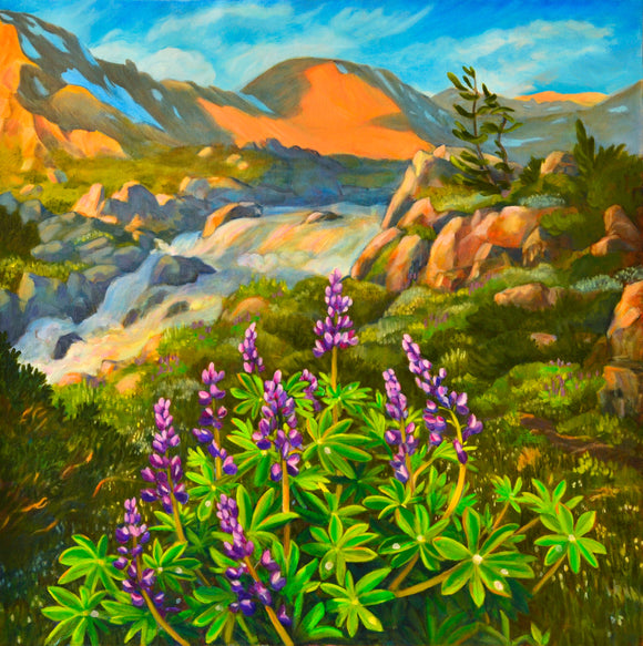 Lupines in the Alpine paper 24x24