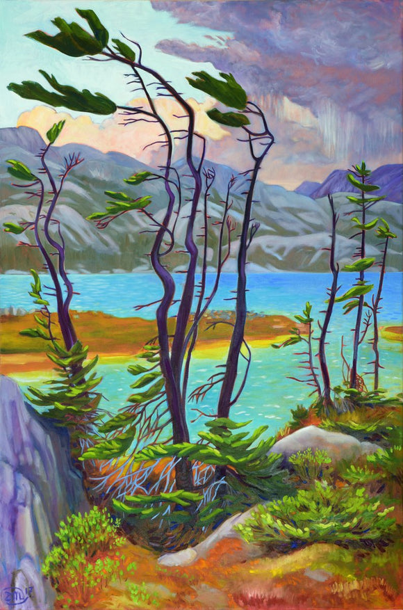 Resilient Spruce at Deep Lake GC 12x18
