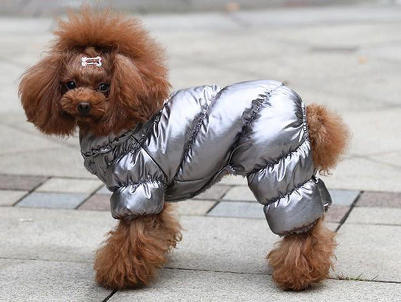 Dog Snowsuit - - SmarchPawz#