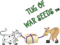 Tug Of War Seeds