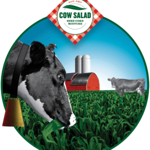 COW SALAD CORN LONG SEASON