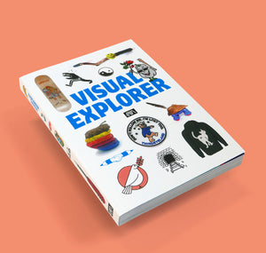 "LAIN – Buch ""VISUAL EXPLORER"""