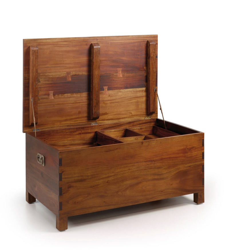 Trunk with Tray
