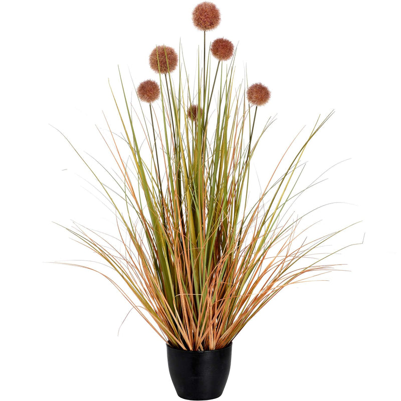 Potted Grass With Pom Pom Fronds
