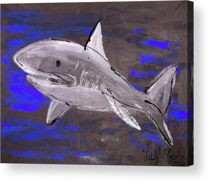 Blue Shark - Acrylic Print