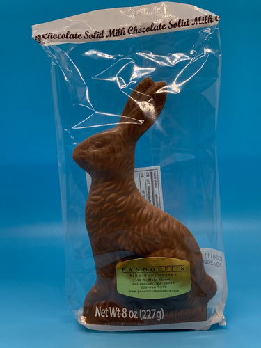 8 oz. Solid Milk Chocolate Bunny