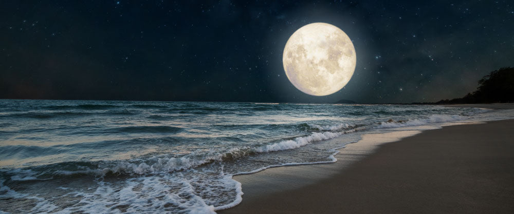 Solo Therapy Full Moon On The Beach