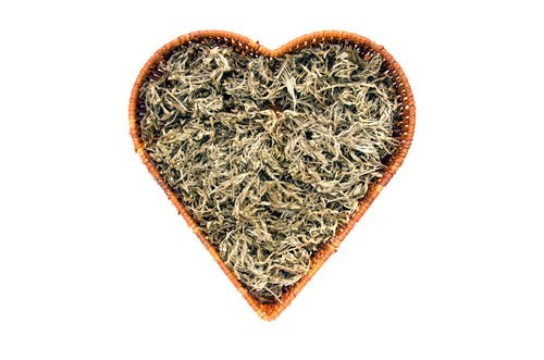 Wormwood Dried Cut Herb Solo Therapy