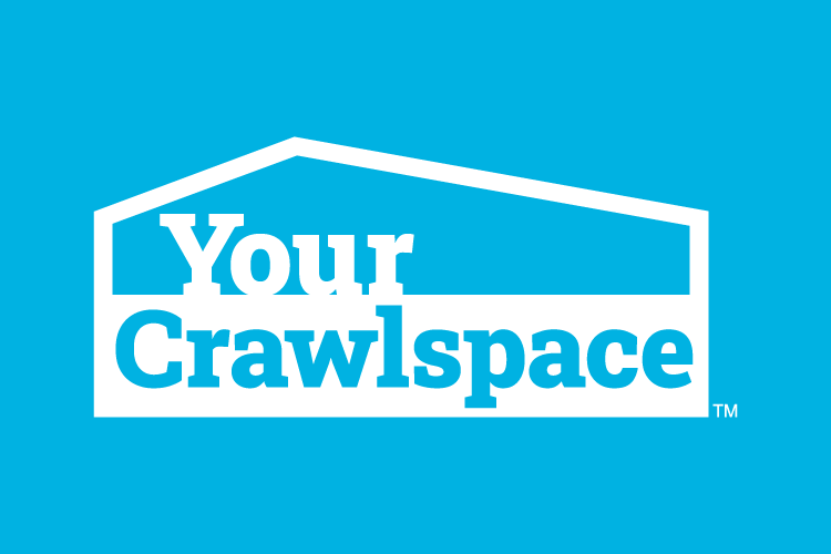 Crawl Space Termite Infestation