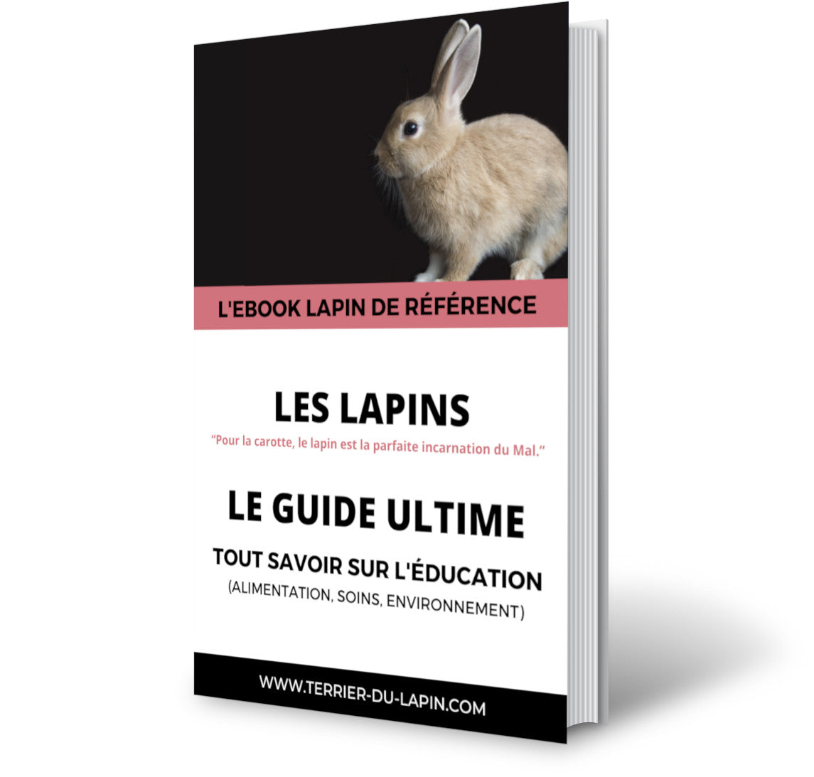 ebook terrier du lapin