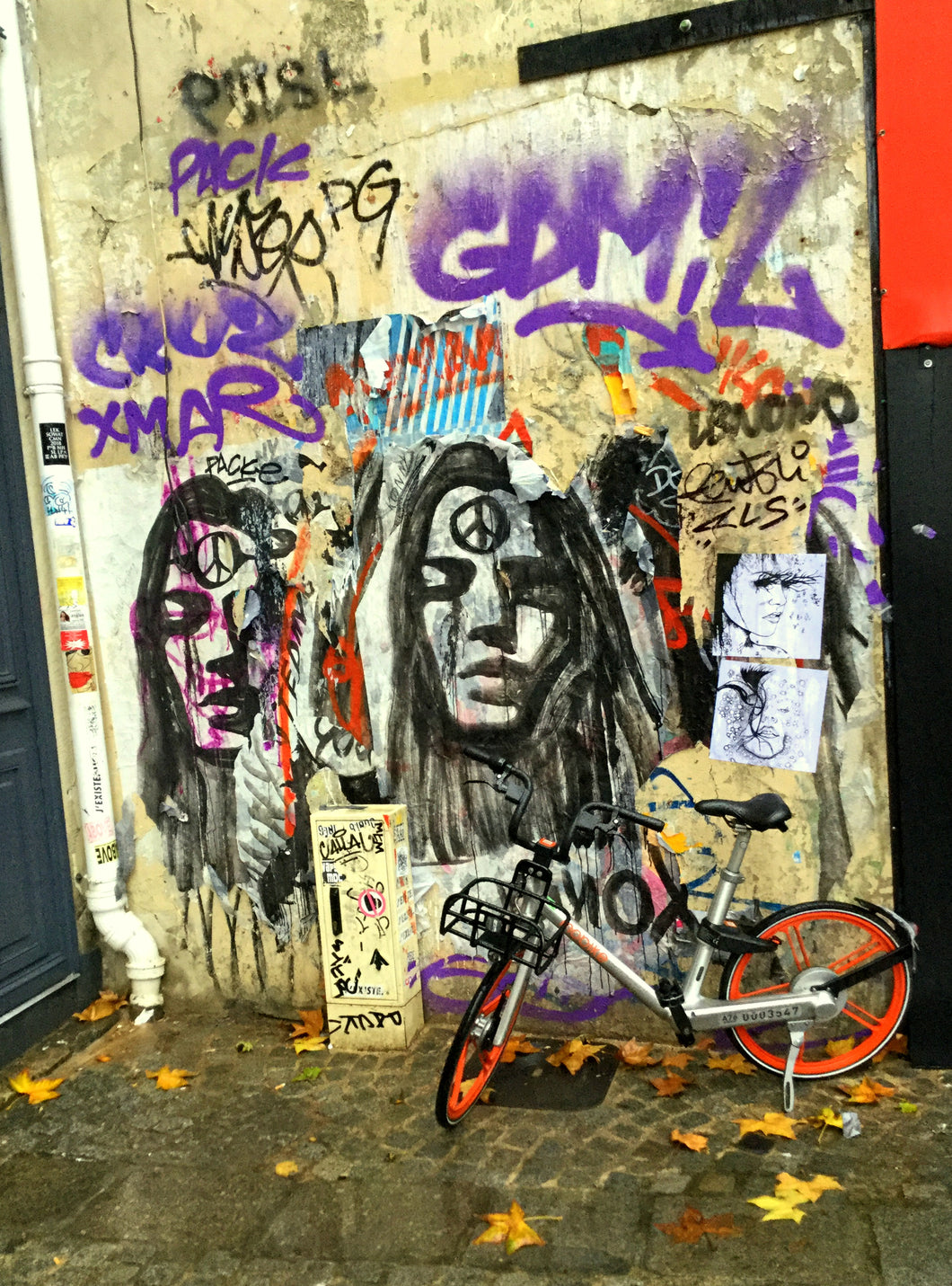 Graffiti with bicycle, Paris, France