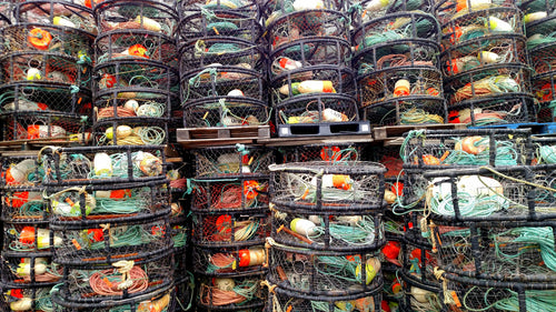 Crab pots - Half Moon Bay, California