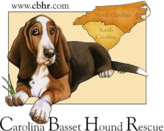 Carolina Basset Hound Rescue logo