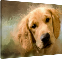 Golden Retriever gallery wrap