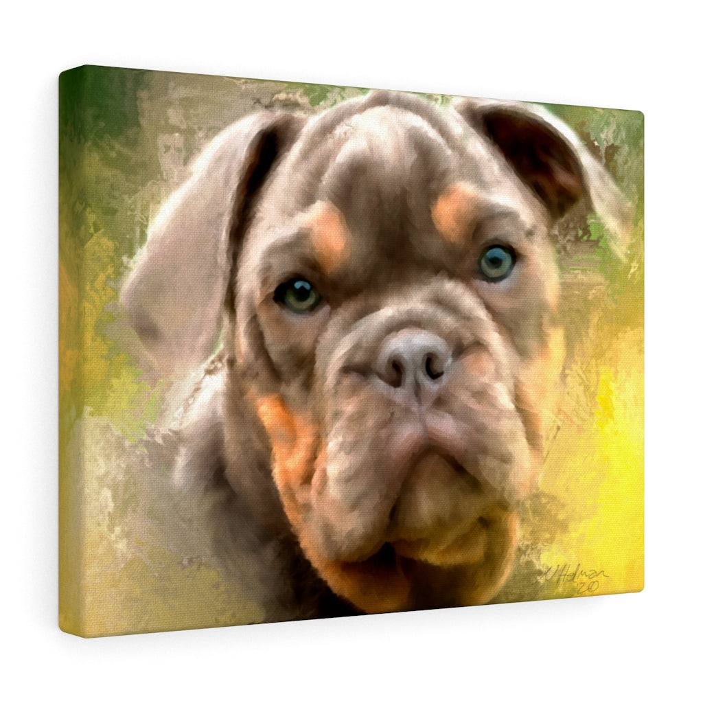 Hand-Painted Pet Portrait From Your Photo