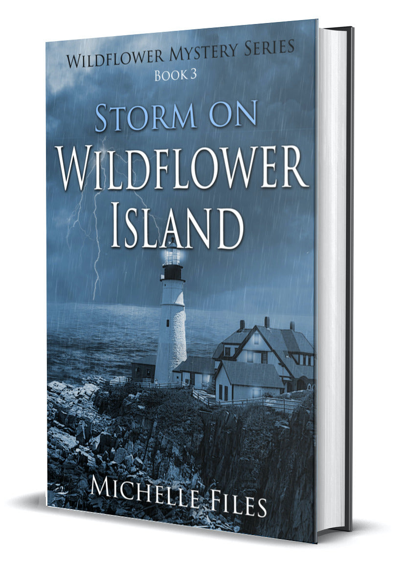 Storm on Wildflower Island - paperback