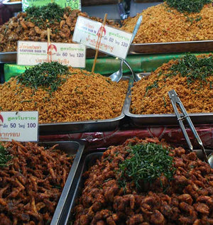 Dried Shrimp from Or Tor Kor Market Bangkok