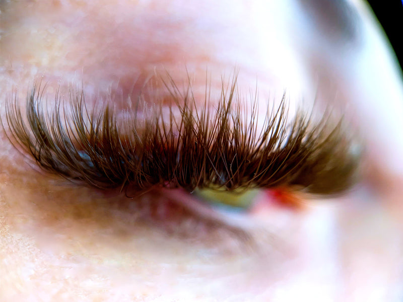 Brown Volume Lash Extensions