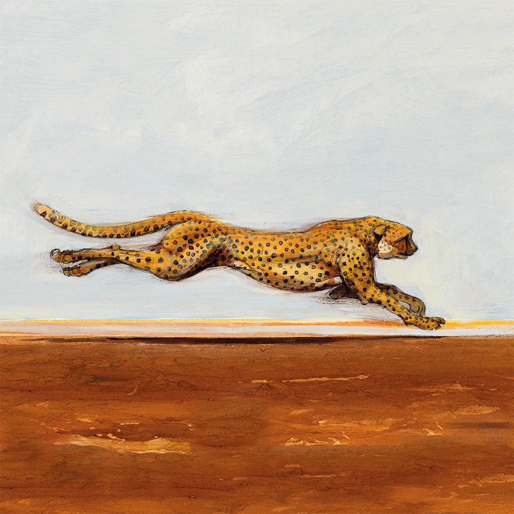 A006 Running Cheetah