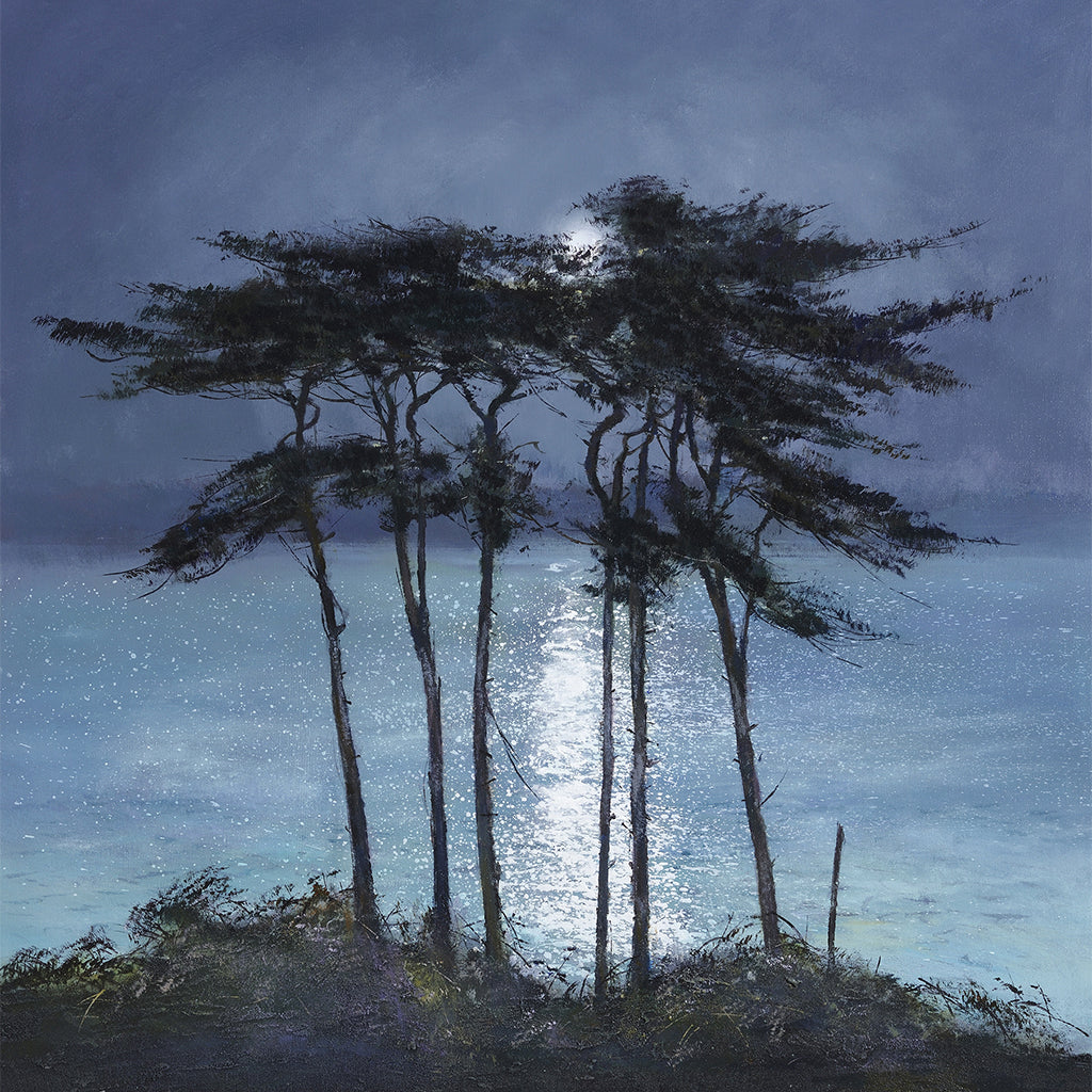 CC004 Moonlit Pines, Helford River