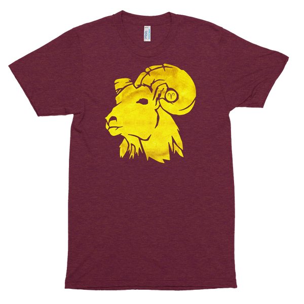 Golden Aries Astrological Zodiac Premium Tri-Blend T-Shirt