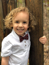 Load image into Gallery viewer, Little Dapper Dude Bow Ties